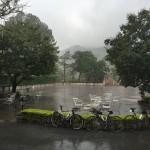 Moesson regen